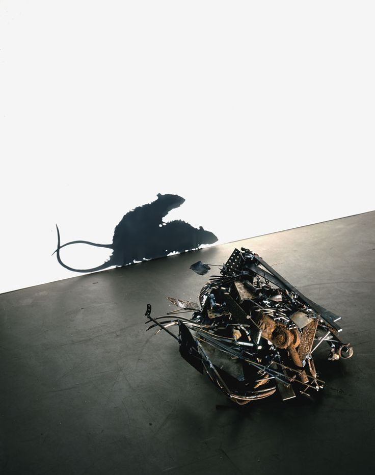 shadow instalation metal rats fcking